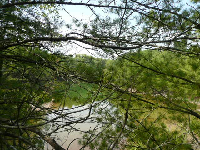 photo of land and lake